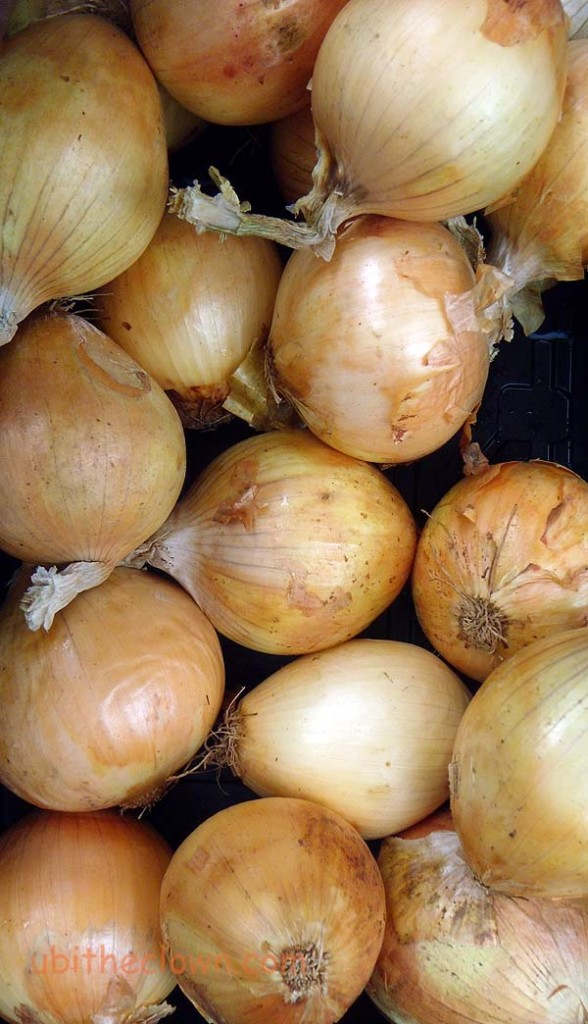 Locally-grown onions at the Farmers' Market at Art in the (Herman) Park, Goldsboro, NC. First Sundays, 2-5.