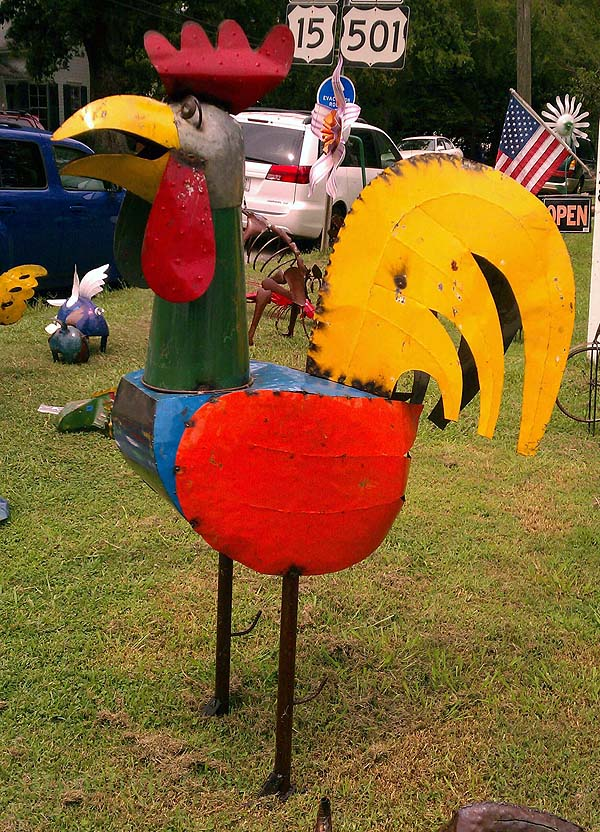 A fairly large chicken, about four feet tall.